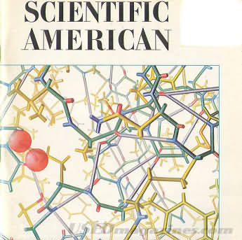 Scientific American November 1966